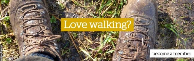 Love walking copy